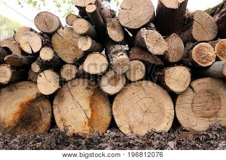 A pile of stacked up logs cut up for fire wood