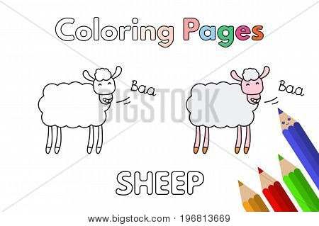 Cartoon sheep illustration. Vector coloring book pages for children