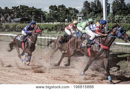 Horse Racing Game Bet