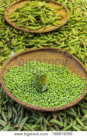 Green peas, Pisum sativum, being sold at traditional local food market.
