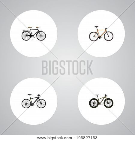 Realistic Timbered, Hybrid Velocipede, Fashionable And Other Vector Elements