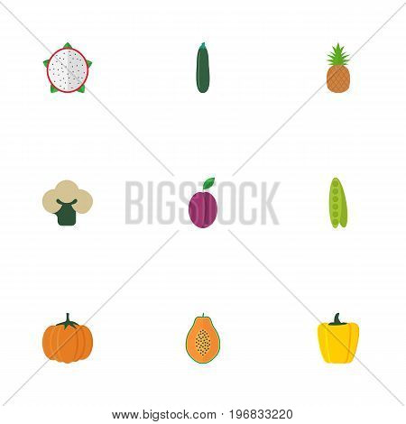 Flat Icons Pitaya, Ananas, Gourd And Other Vector Elements