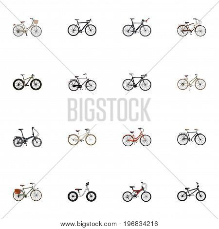 Realistic For Girl, Working, Cyclocross Drive And Other Vector Elements