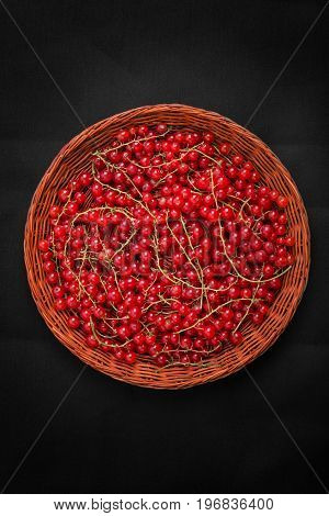A top view of saturated red currant in a wicker brown basket on a black background. Many juicy and bitter red currants in a wooden crate. Vegetarian ingredients for summer shakes.