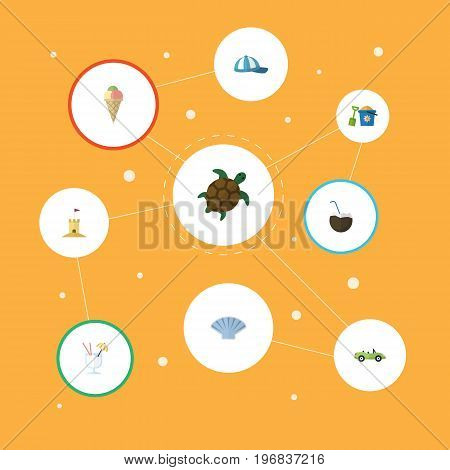 Flat Icons Drink, Hat, Tortoise And Other Vector Elements