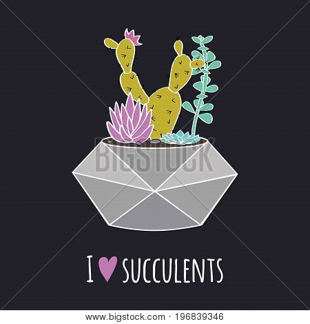 Vector Colorful Illustration With Cactus, Succulents In Geometric Pot And Phrase