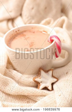 chocolate milk with cocoa and biscuit
