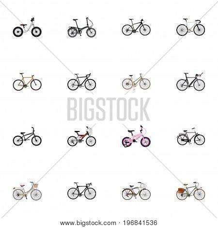 Realistic Competition Bicycle, Equilibrium, Training Vehicle And Other Vector Elements