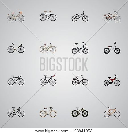 Realistic Adolescent, Cyclocross Drive, Hybrid Velocipede And Other Vector Elements