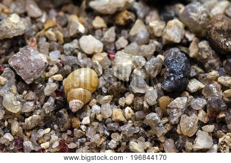 Macro shot of sand at the beach. Small stones shells rocks.