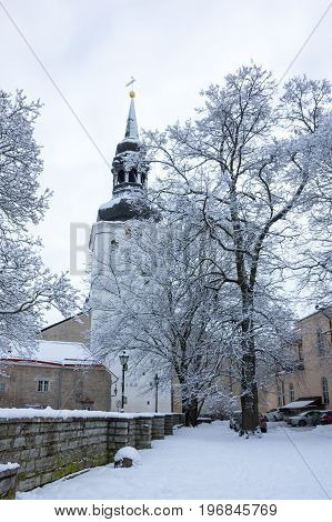 Dom Cathedral in Old Town of Tallinn Estonia