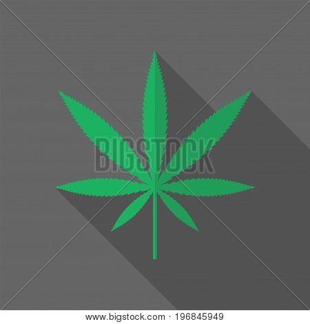 marijuana leaf icon. Vector sign for web graphics.