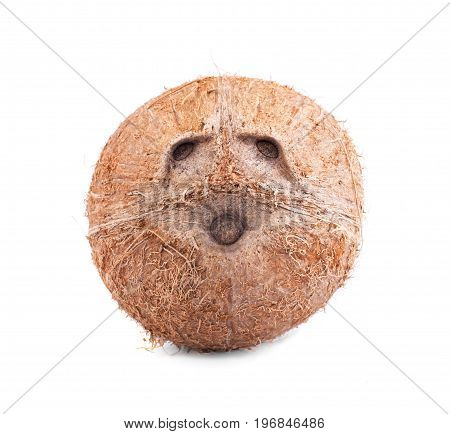 Close-up of single tropical brown coconut isolated on a white background. Fresh tasteful whole coco full of vitamins. Brown natural tropical and fresh fruit coconut.