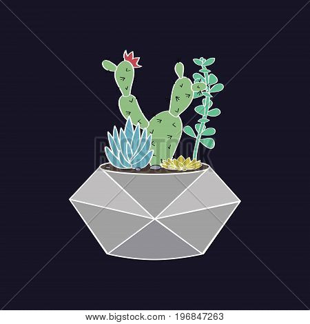 Vector Colorful Illustration With Cactus And Succulents In Geometric Pot. Modern Scandinavian Style