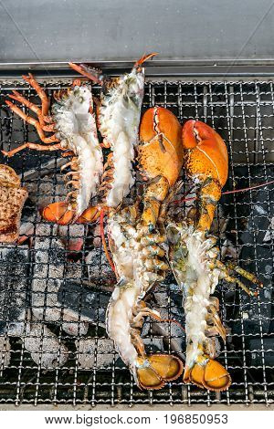 Lobster on the charcoal grill