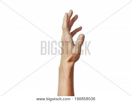 Human hand in picking gesture isolate on white background. Hope and help concept