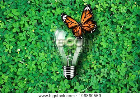Glowing eco text in light bulb being on green grass background and monarch butterfly , concept idea, 3d illustration