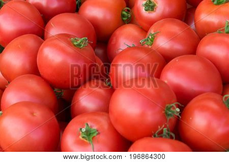 Delicious Red Tomatoes. A Pile Of Tomatoes. Summer Tray Market Agriculture Farm Full Of Organic Toma