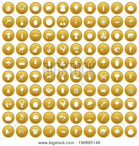100 live nature icons set in gold circle isolated on white vector illustration