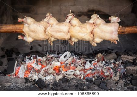 Roasted whole chickens on spit (grill) over charcoal