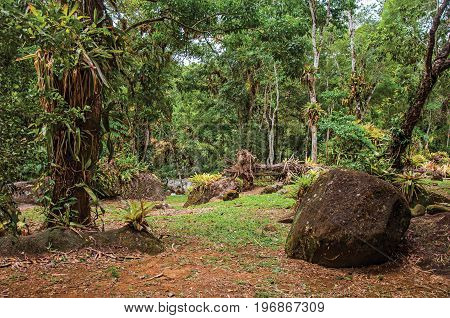 Overview of stones amidst tropical landscape on cloudy day near Paraty, an amazing and historic town totally preserved in the coast of the Rio de Janeiro State, southwestern Brazil