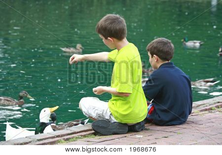 two boys sitting by a pond and feeding the ducks poster