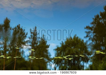 Water reflections with trees in the background