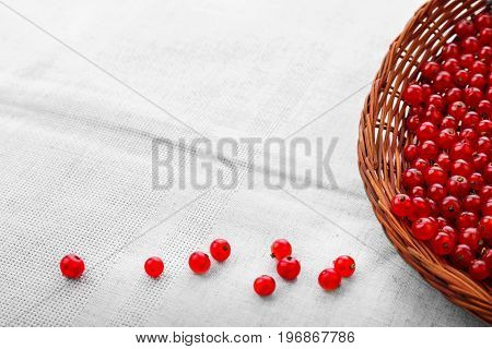 Juicy, raw red currant in a basket. A light brown wooden basket on a fabric background. Healthful tasty currant for nutritious breakfast. A few red berries near the crate. Juicy berries.