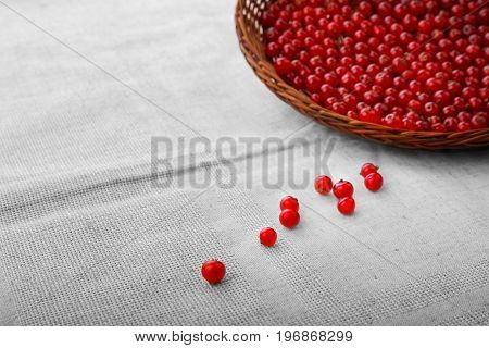 Juicy, raw red currant in a basket. A light brown wooden basket on a fabric background. Healthful tasty currant for nutritious breakfast. Juicy berries.