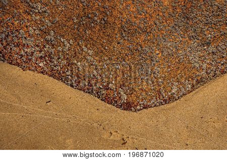 Close-up of peculiar rock with barnacles and sand in Paraty Mirim, a tropical beach near Paraty, an amazing and historic town in the coast of the Rio de Janeiro State, southwestern Brazil.