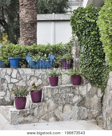 A small staircase with flower pots. Decorations houses