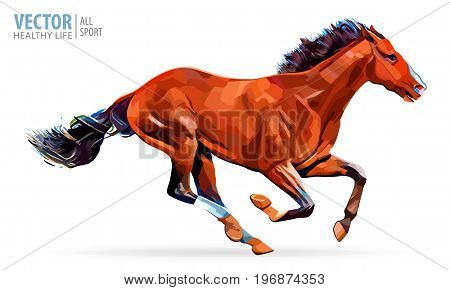 Galloping horse. Arabian horse. Portrait standing against isolated white background. Sorrel, red color horse. Vector. Illustration