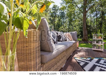 Close shot of a sunflowers vase located close to the garden couch with pillows