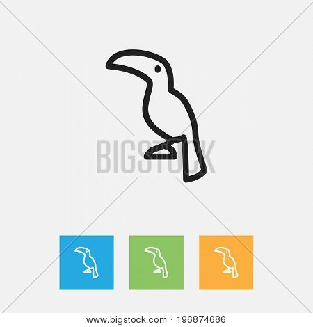 Vector Illustration Of Zoology Symbol On Tropical Bird Outline