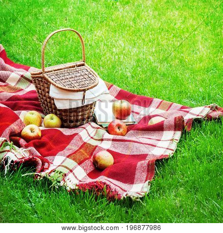 Checkered Plaid Picnic Basket Green Grass Summer