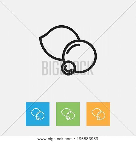 Vector Illustration Of Cookware Symbol On Bilberry Outline
