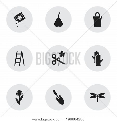 Set Of 9 Editable Agriculture Icons. Includes Symbols Such As Alstroemeria, Trimming, Stairway And More
