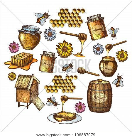 Hand drawn ink sketch illustration set of honey organic nature products. Vector