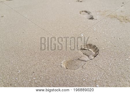selective focus on big footprint on the sand as life journey concept.