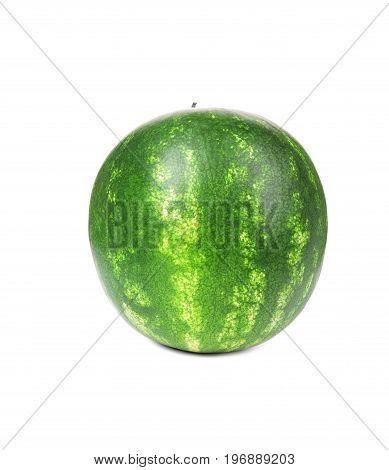 Fresh, organic and bright green watermelon, isolated on a white background. Green striped and juicy watermelon. A watermelon full of vitamins. Summer fruits.