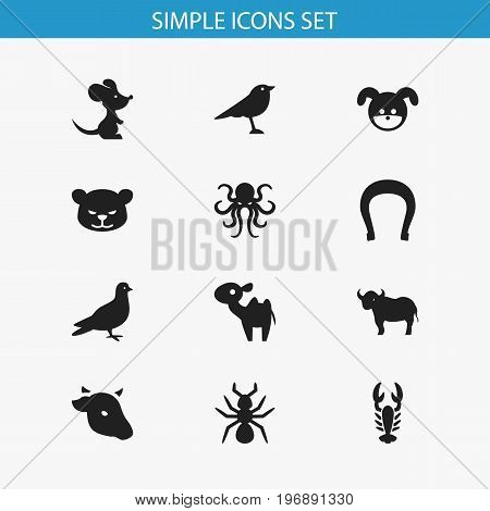 Set Of 12 Editable Animal Icons. Includes Symbols Such As Puma, Crawfish, Mouse And More