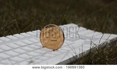 Gold Litecoin Coin
