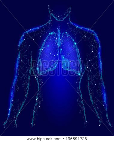 Human Lungs Internal Organ. Respiratory system Inside Body Silhouette. Low Poly 3d Connected Dots Triangle Polygonal Design. Blue Color Background Vector Illustration art