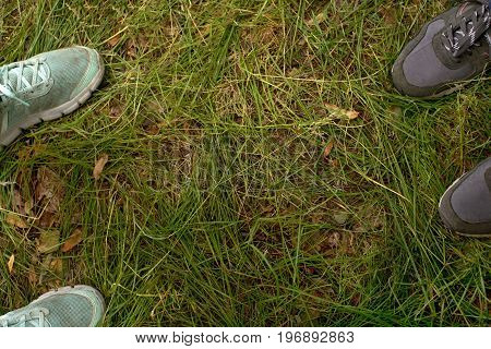 Crop view from above of two people in sportive shoes standing on green grass.