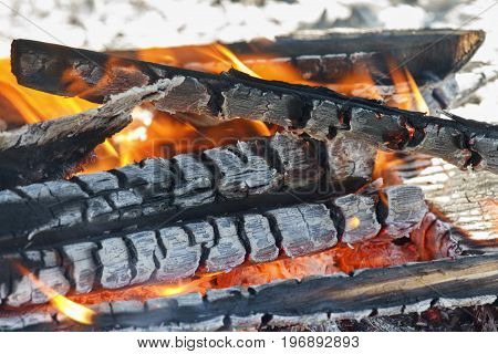 Fire burning on the outdoor glowing logs fire and flames