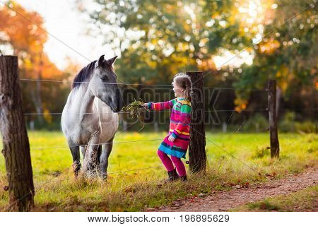 Little Girl Feeding A Horse