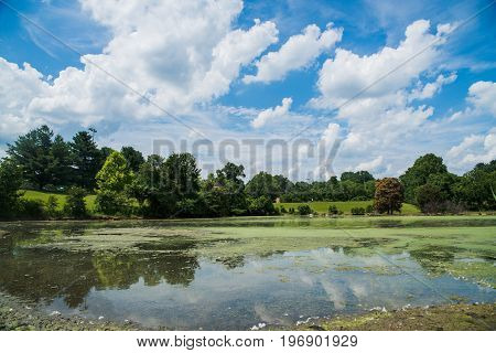 Profound Clouds Atop Beautiful Lake With Trees