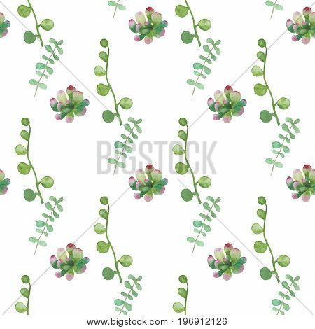 Seamless pattern made of hand-drawn watercolor succulent plants isolated on white background