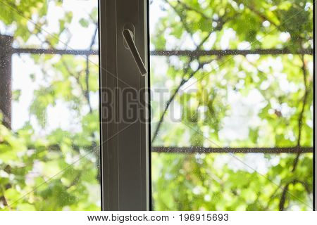 plastic window of country house and view through the window of unfocused vineyard outdoors in summer season