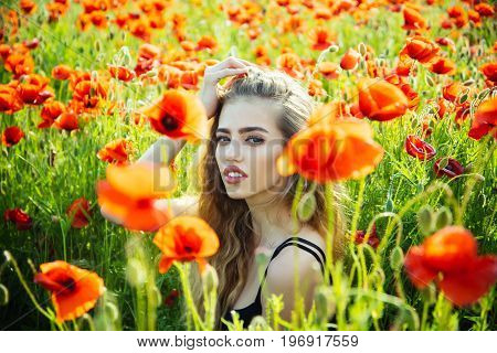 poppy seed. girl with long curly hair in red flower field with green stem on natural background summer spring drug and love intoxication opium